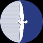 Виртуальный институт АГИКИ